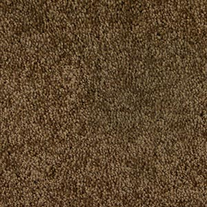 Saxony Cut Pile Carpet