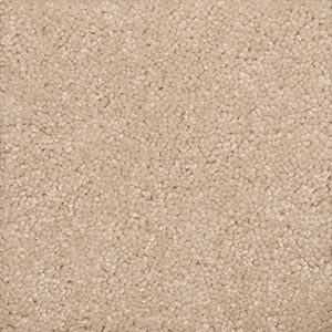 Textured Cut Pile Carpet