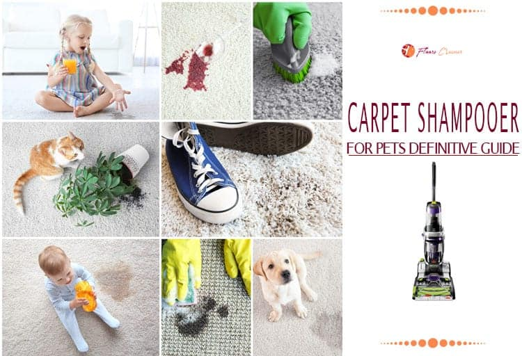 Best Carpet Shampooer for Pets Reviews 2019