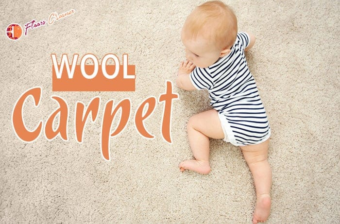 About Wool Carpet