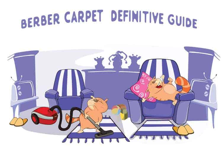 Berber-Carpet-Definitive-Guide 2019