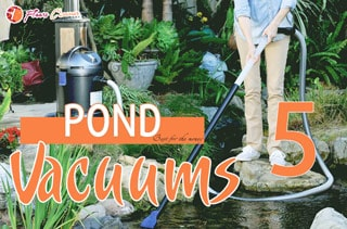 TOP 5 Best Pond Vacuum For The Money