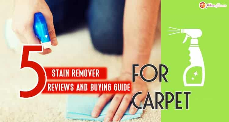 Carpet Stain Remover For The Money 2020