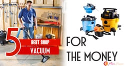 [TOP 5] Best Shop Vacuum For The Money
