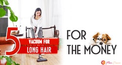 [TOP 5] Best Vacuum for Long Hair
