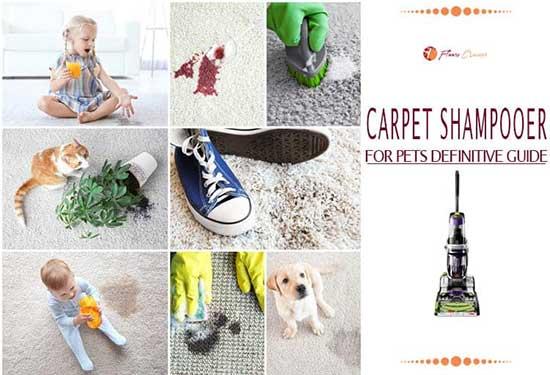 Best Carpet Shampooers for Pets 2020